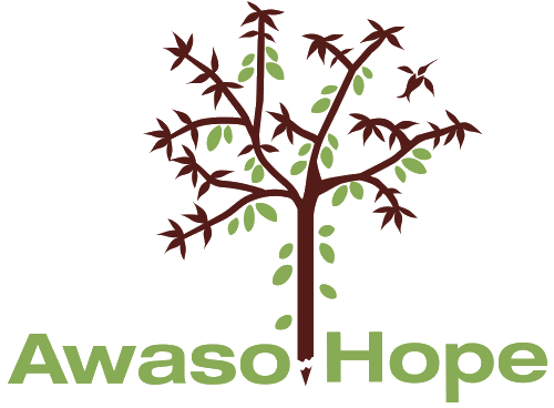 Awaso Hope Foundation